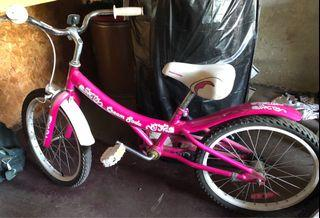 Bike ( For youth)