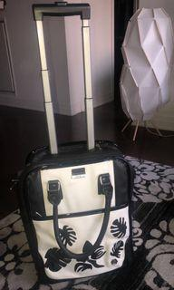 Laptop bag/carry on