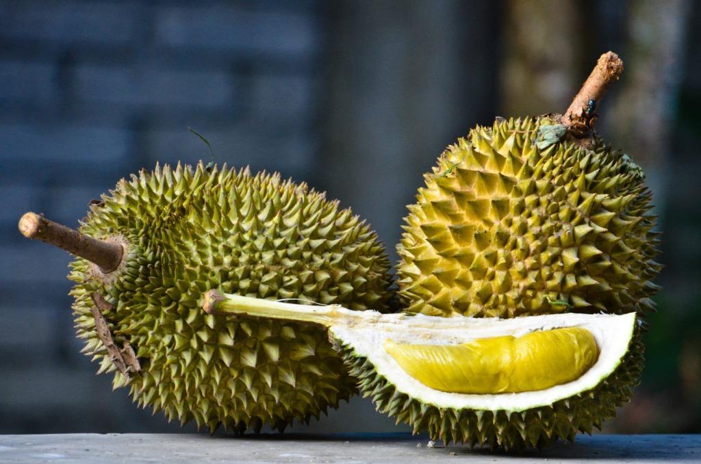 Durian Opener cum sales