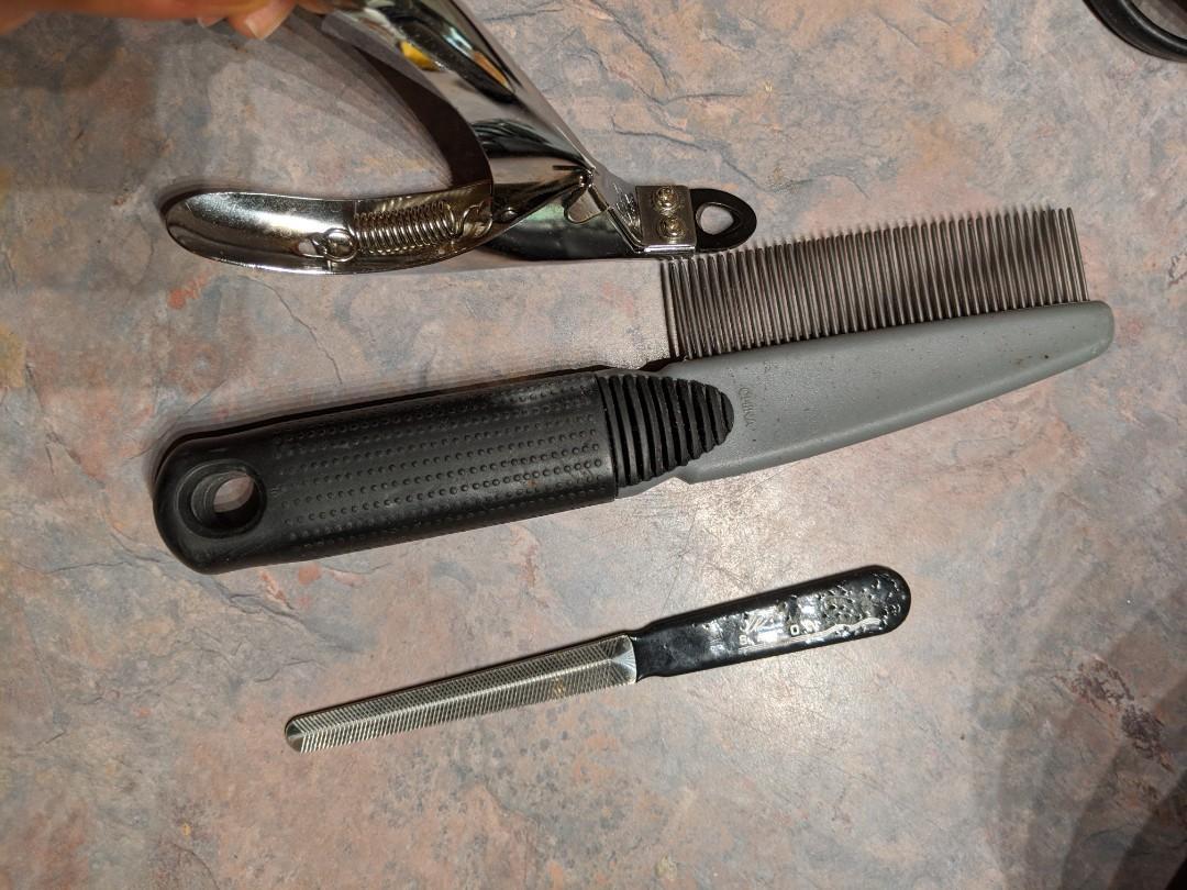 Dog grooming (comb, nail clipper, nail file)