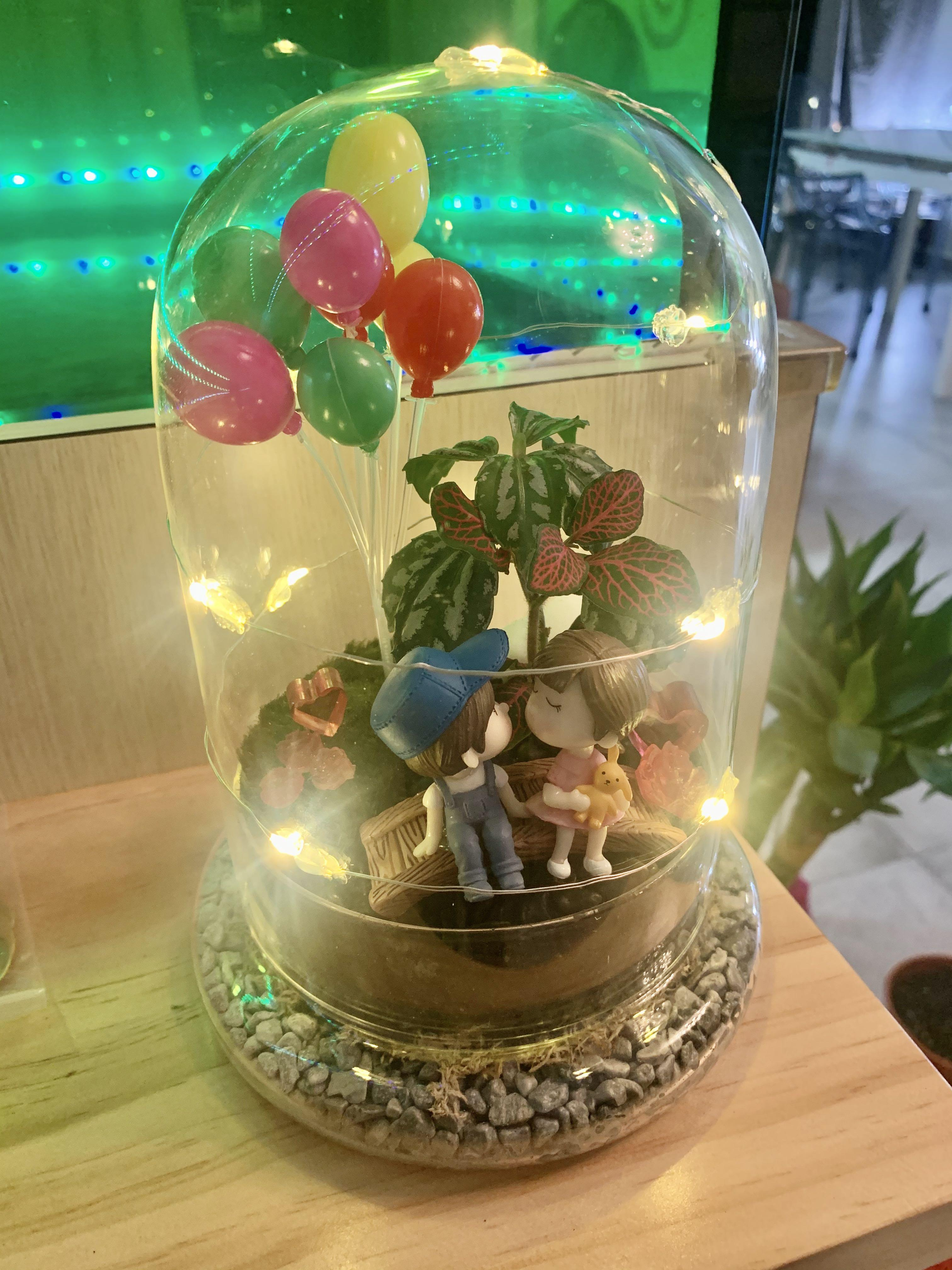 Couple Live Moss Terrarium With Fairytale Lights And Handmade Resin Figurines Gardening Plants On Carousell