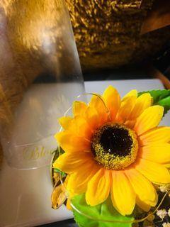 Sunflower Glass Dome
