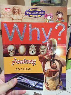 Why? anatomy