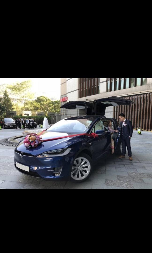 Tesla Model X 100D (A)