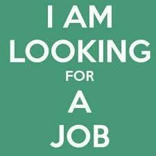 LOOKING FOR ADMIN JOB ( WORK FROM HOME )