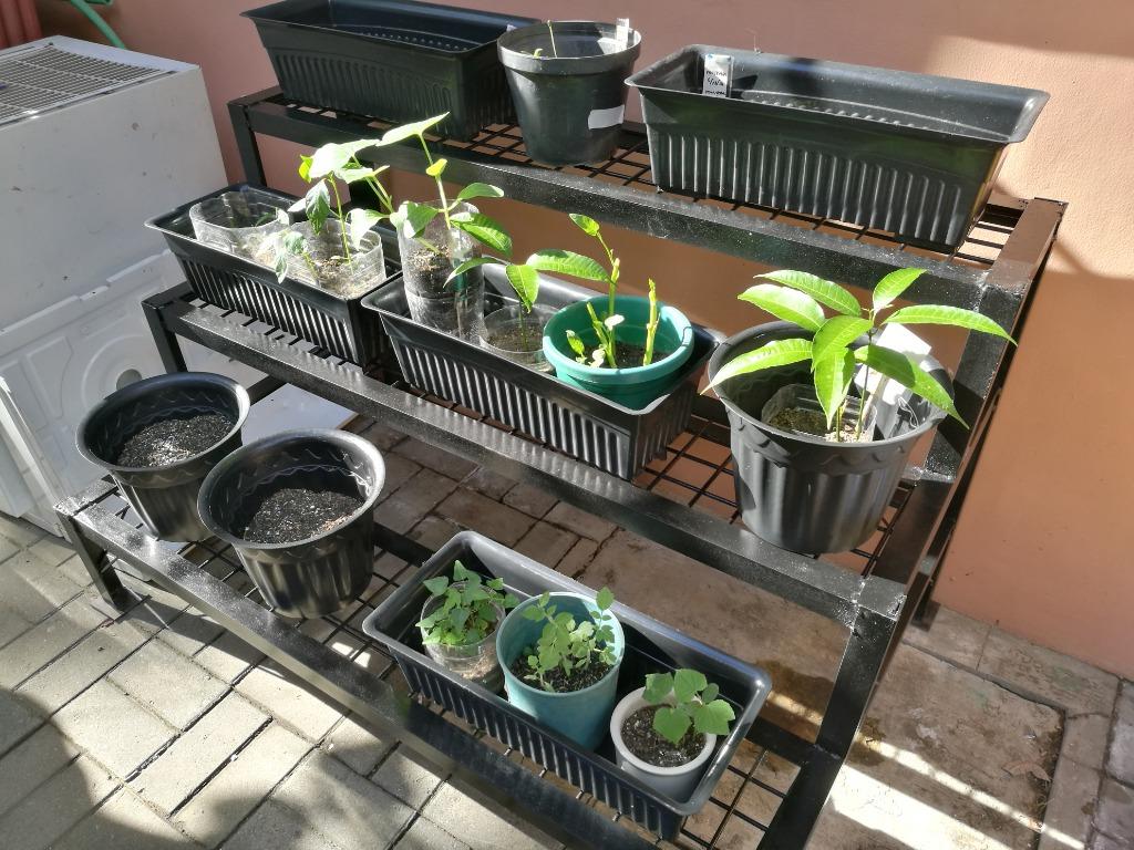 Plant Rack Metal Steel 3 Levels