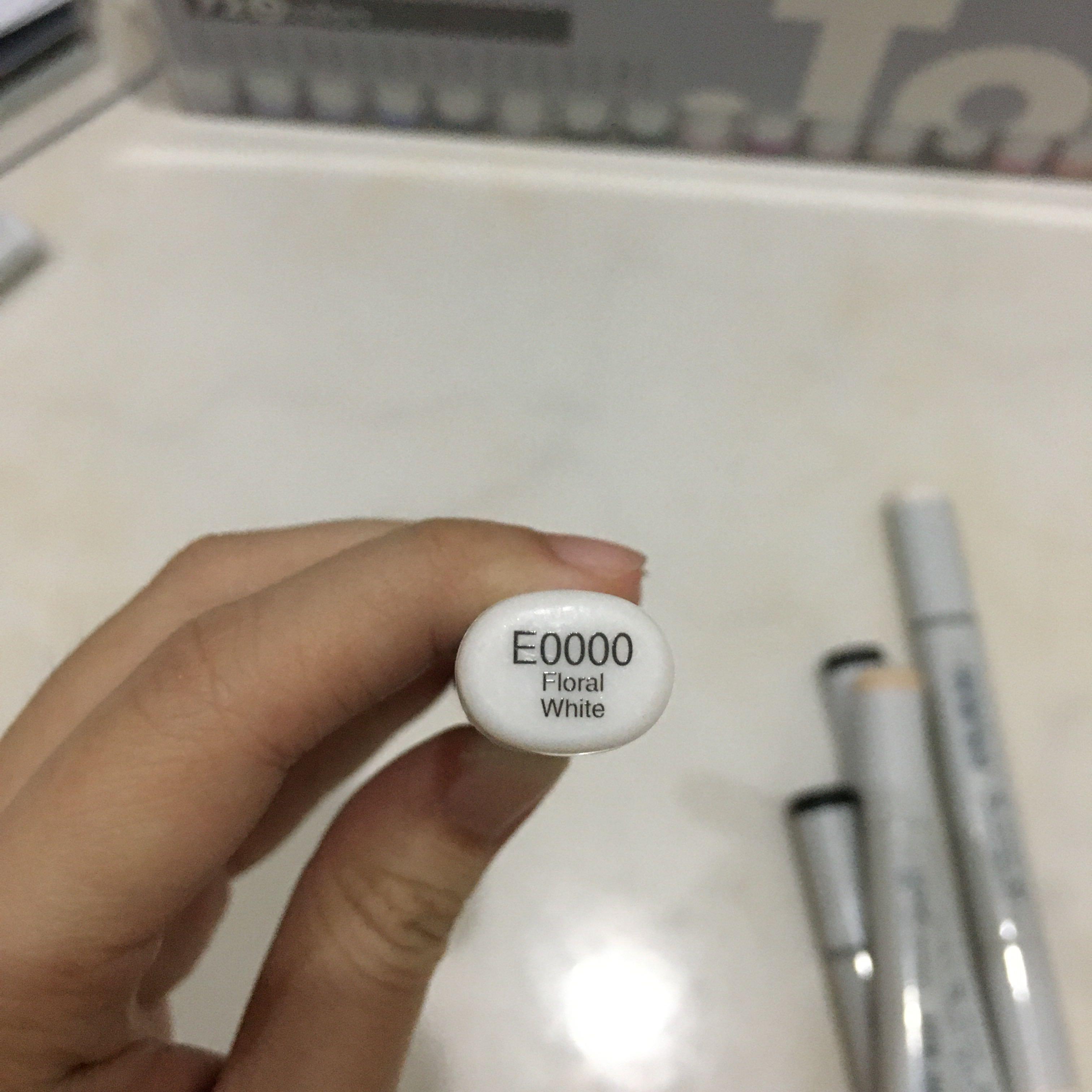 Copic Color Sketch E0000