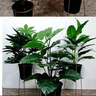 (Free delivery) Artificial plants with standing pot ( Only $50!)