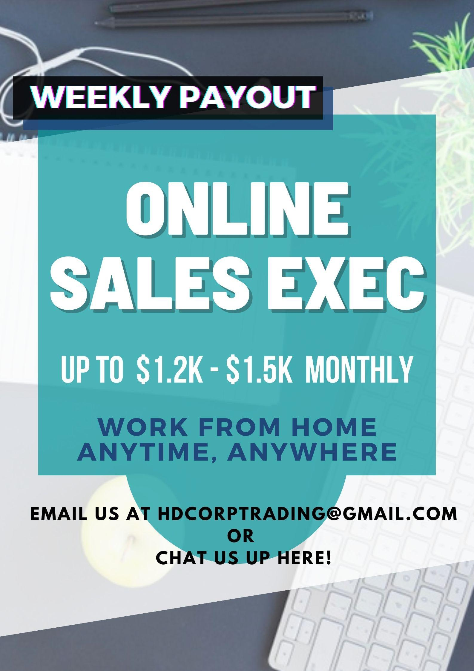 (Work From Home) Online Sales Executive