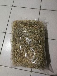 Hay for guinea pigs and rabbit