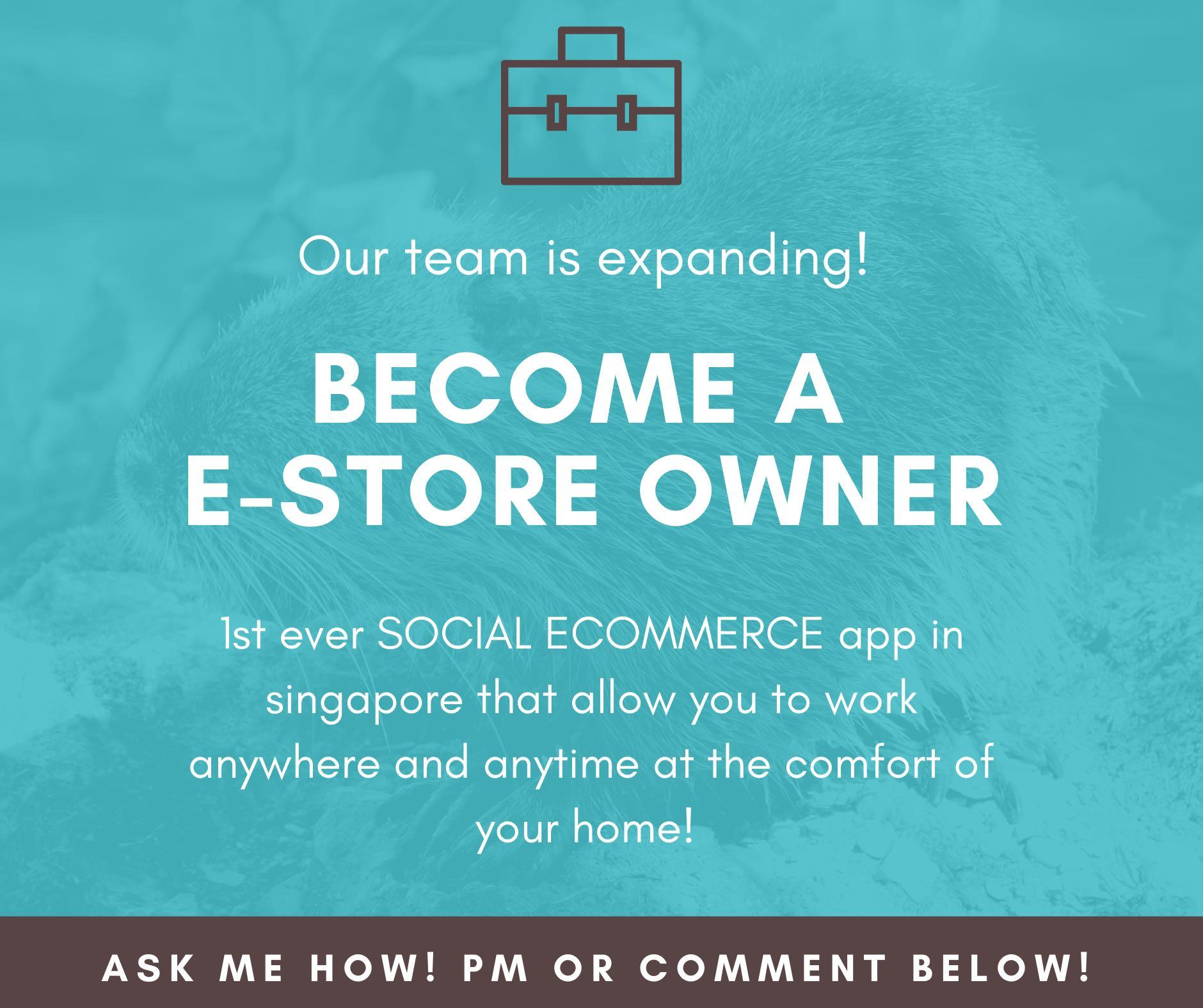 Become a E-Store Owner