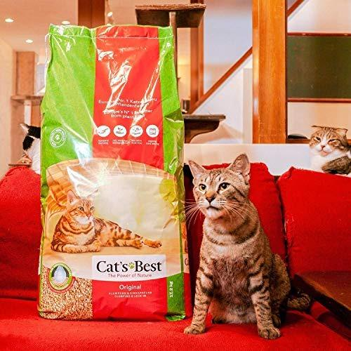 Cats Best Oko Plus Litter 40l 17 2kg Xxl Self Collect Or Delivery Pet Supplies For Cats Cat Accessories On Carousell