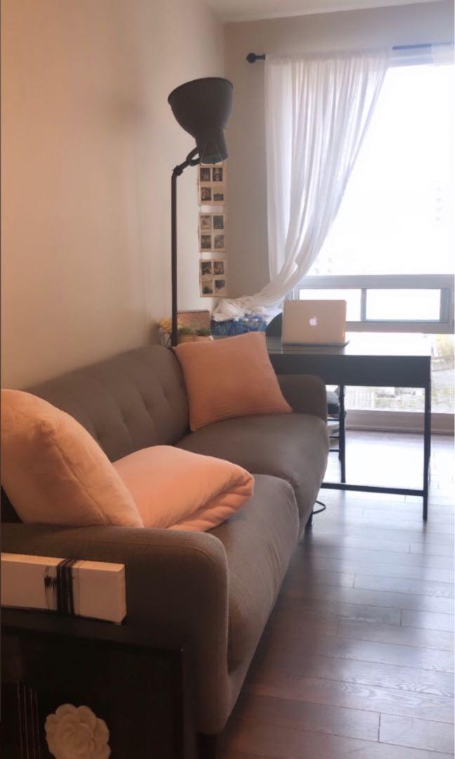 Dark Grey Couch