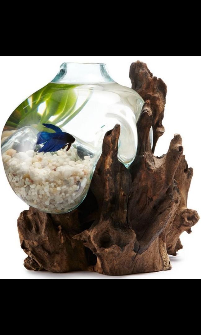 Aquarium hias