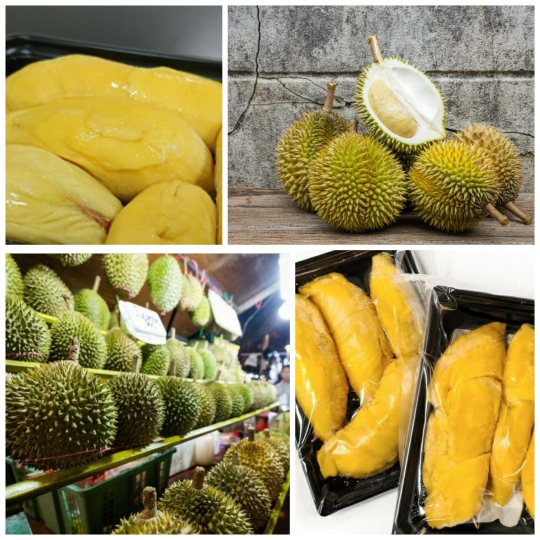 Frozen Msw Musang King Durian 400g Pahang Food Drinks Instant Food On Carousell