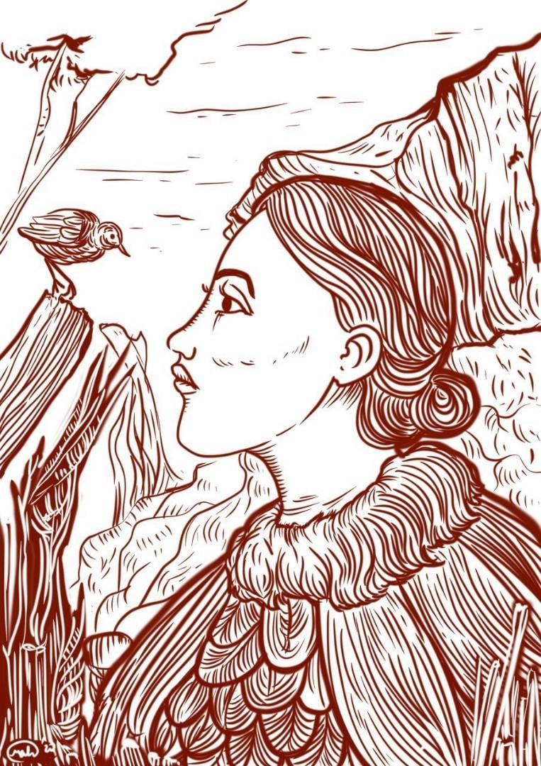 Ilustrasi line art