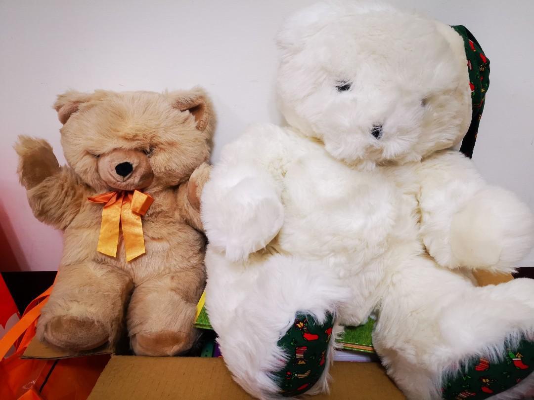 免費小熊  萌萌泰迪熊 8成新 沒污漬 歡迎索取#剩左邊棕熊囉🐹