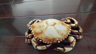 精美螃蟹擺飾,意者私訊!再降價!