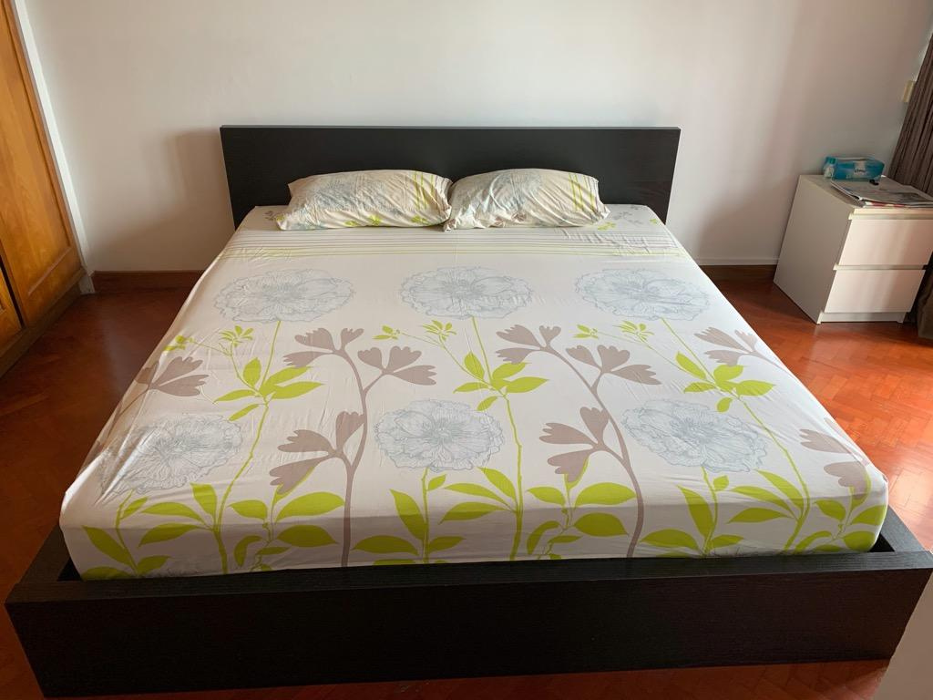 49 Ikea King Bed Frame Malm Model Only For Today Furniture Beds Mattresses On Carousell