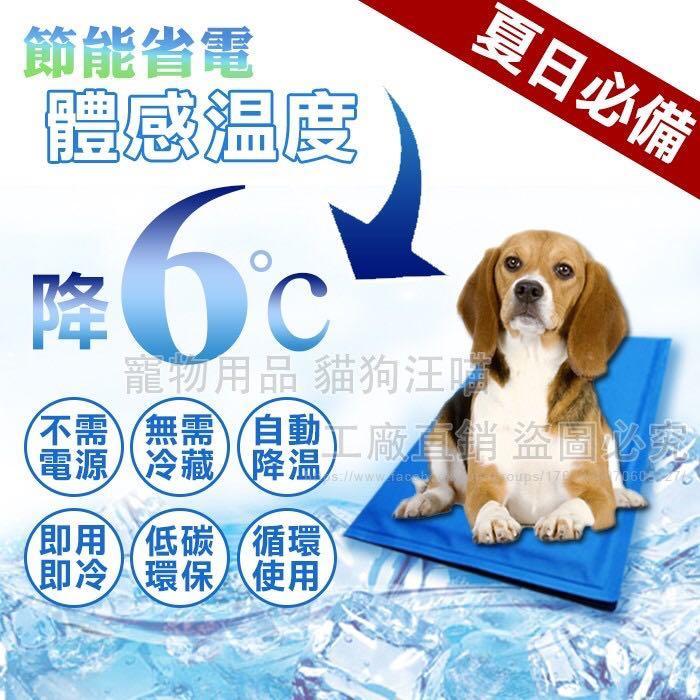 XL號寵物冰墊 人寵降溫 筆電散熱 涼墊 寵物冰墊 降溫 散熱 狗窩 貓床 夏季 涼感 寵物用品 大量現貨 清涼