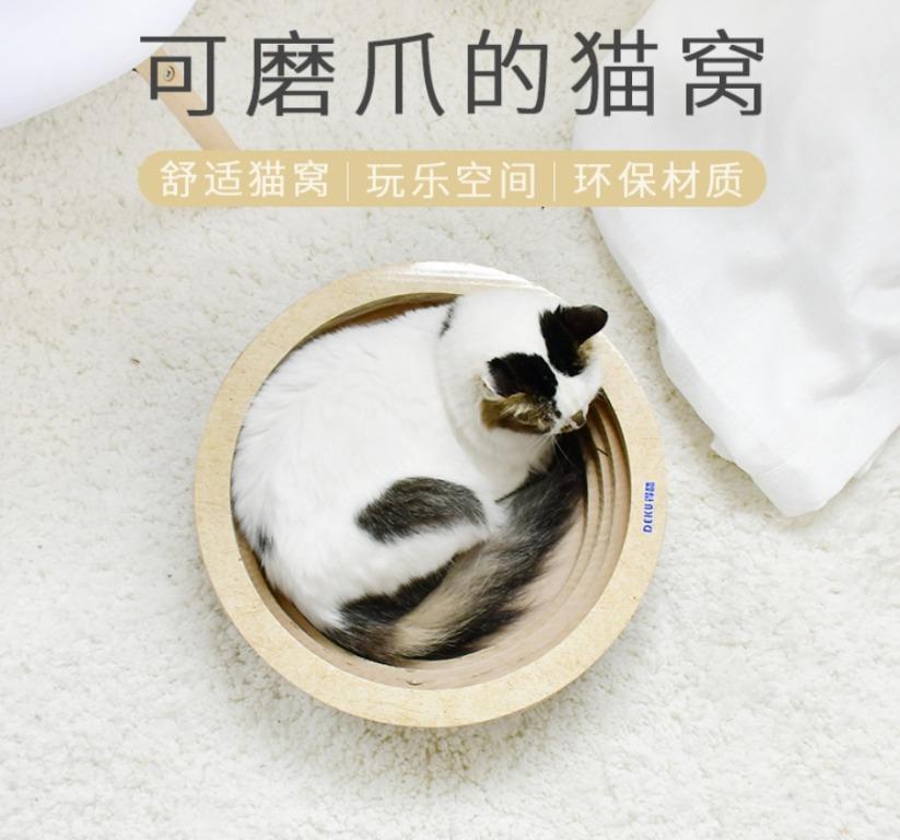 加大 貓抓碗 碗型貓抓板 貓抓板 圓餅貓抓板 貓抓碗 貓碗公 貓抓窩