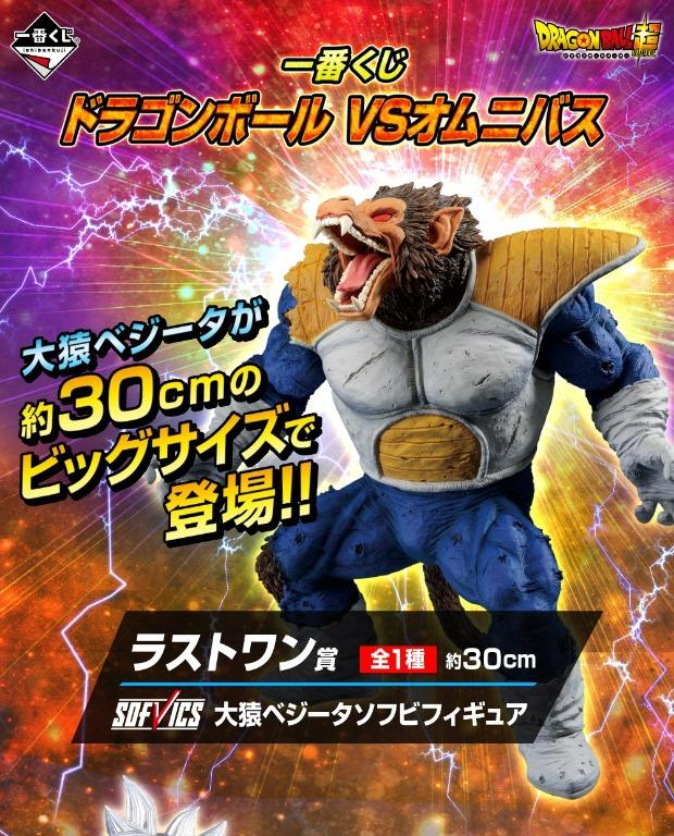 [Pre-Order] Ichiban Kuji DragonBall vs Omnibus Live Draw Tickets [80 out of 80]