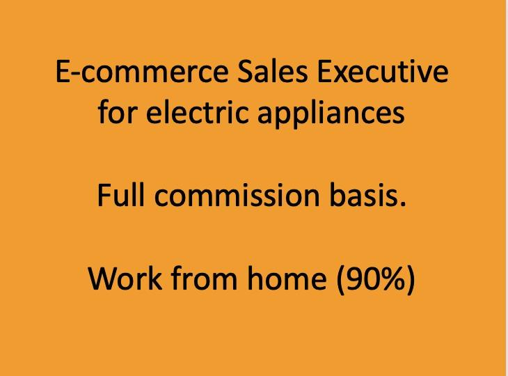 E-commerce Sales Executive