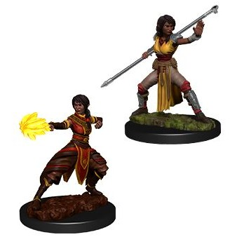 Half Elf Monk Female Dungeons Dragons Miniatures Toys Games Bricks Figurines On Carousell
