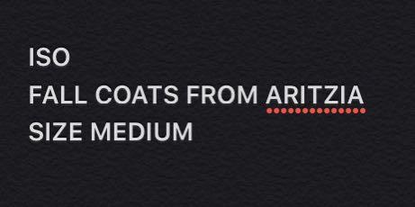 ISO FALL COAT FROM ARITZIA