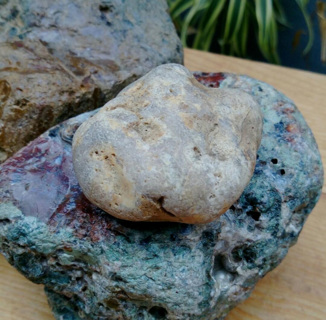 原石原礦/西藏天然白皮黃玉小擺件/純天然西藏黃玉原礦無人為加工過,珍藏品出清