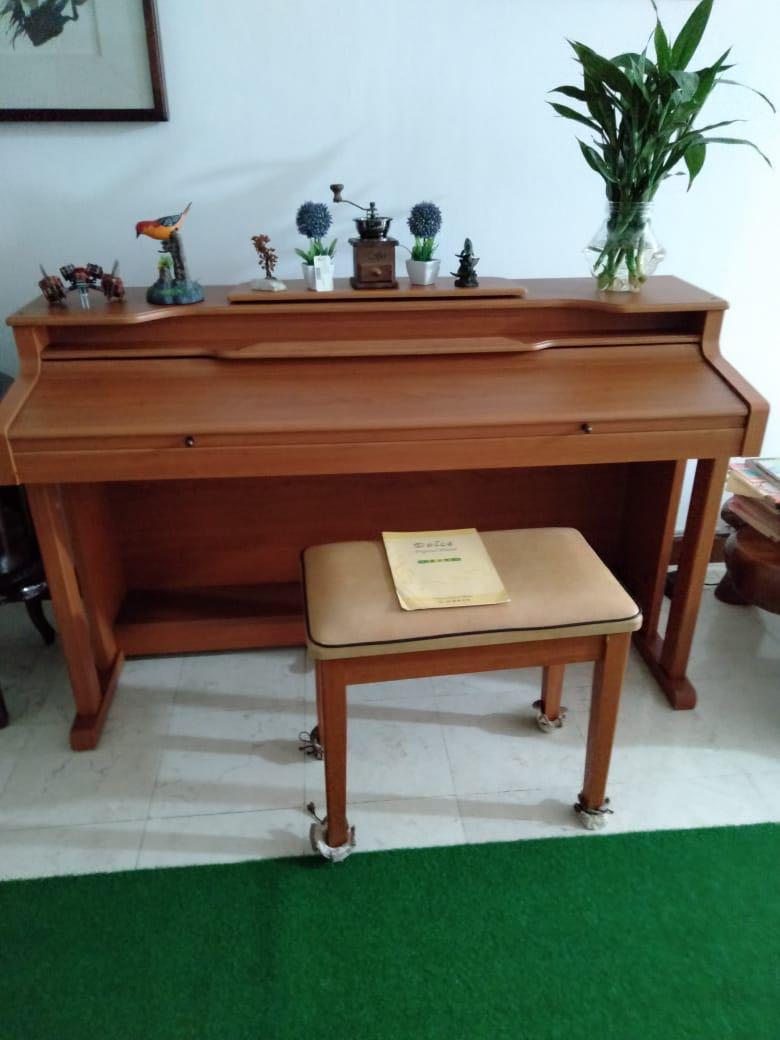 Digital Piano KT-8800