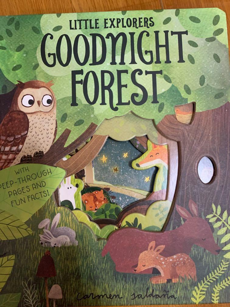 洞洞童書-Goodnight forest