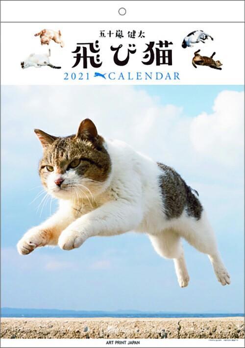 🇯🇵日本製 貓咪壁掛月曆