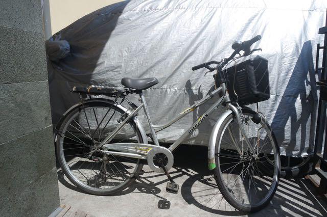 Sepeda Phoenix Citybike Fashion Wanita