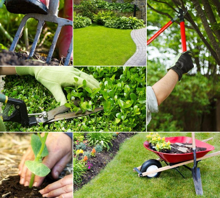 Best Price! Landscaping & Garden Services / Maintenance - Specialist in Residential Area (Plants, Grass, Lawn etc)