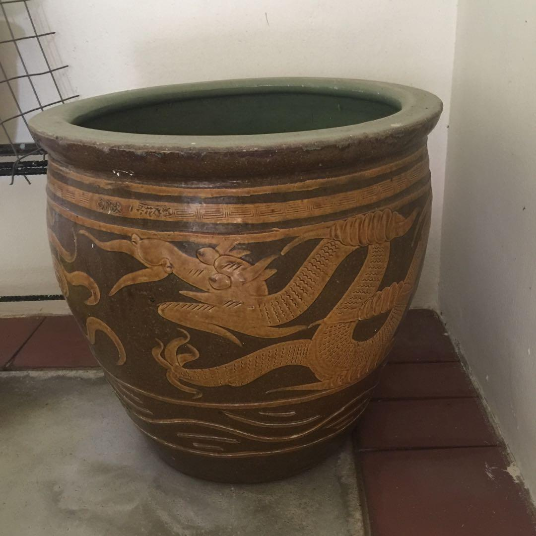 dragon pot for sale