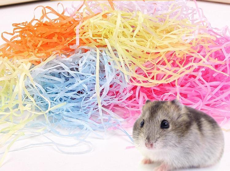 遊戲紙條  倉鼠彩色紙條  鼠食  鼠寶  寵物彩色遊戲紙條  彩色紙條