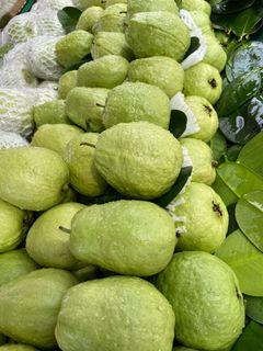 翡翠牛奶芭樂👍 Guava