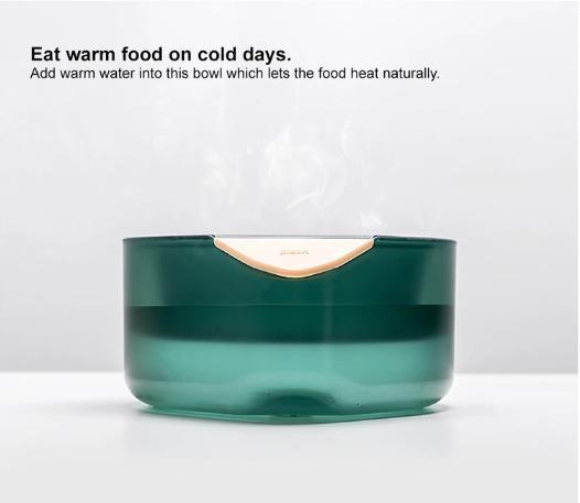 Pet Bowl with Temperature Control