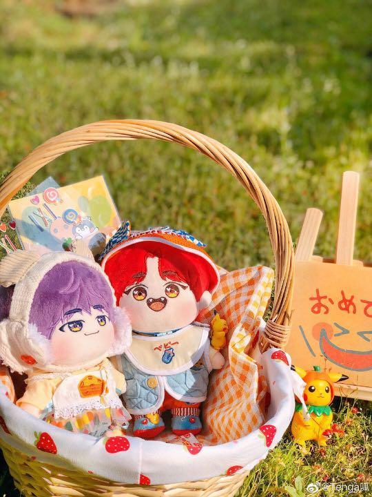 seventeen mingyu wonwoo doll