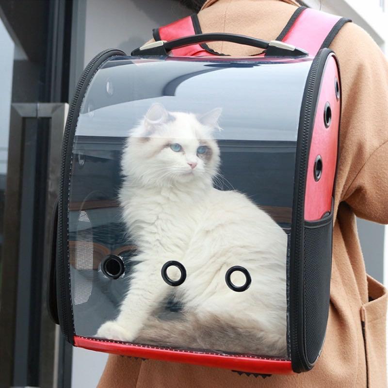 全新 寵物外出背包透明包