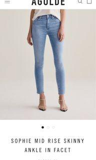 AGOLDE Sophie Mid Rise Skinny Ankle Jeans in Facet