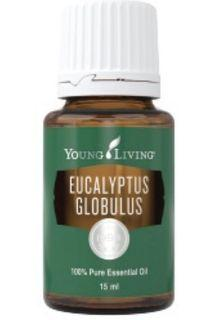 Young Living Eucalyptus Globulus 15ml