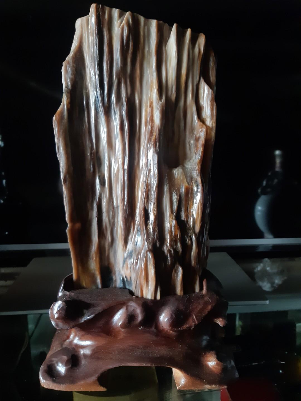 緬甸  樹化玉