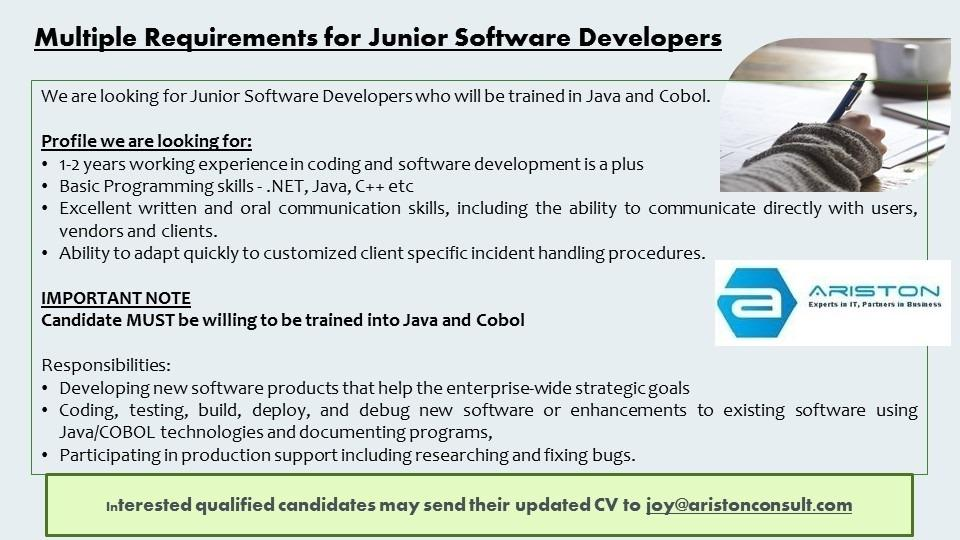 Multiple Requirements for Junior Software Developers