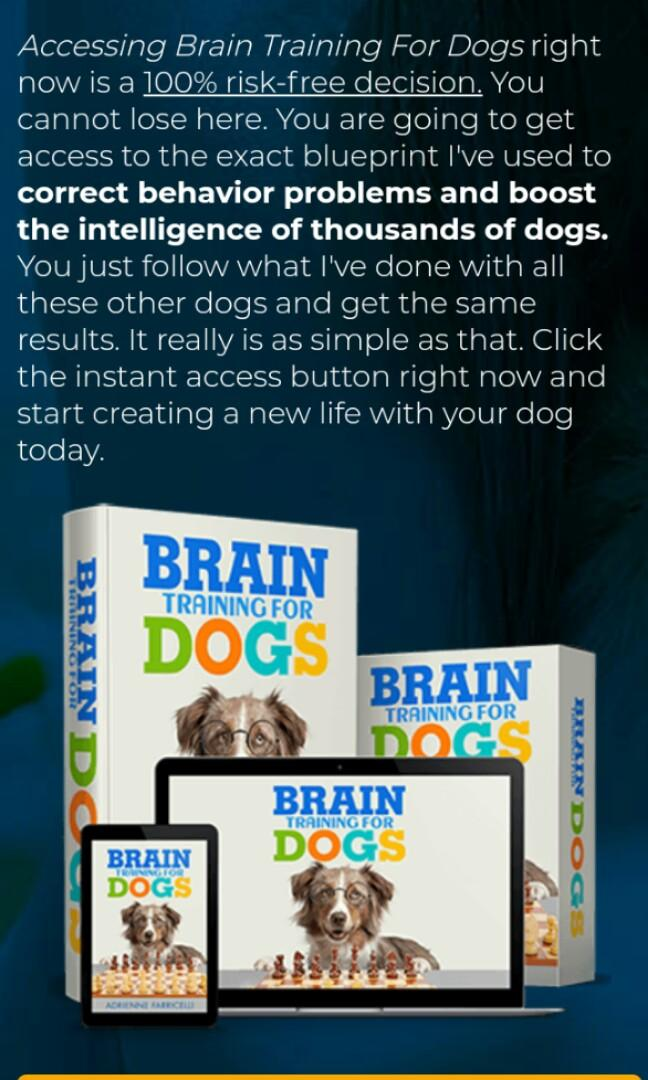 Training guide for dog's