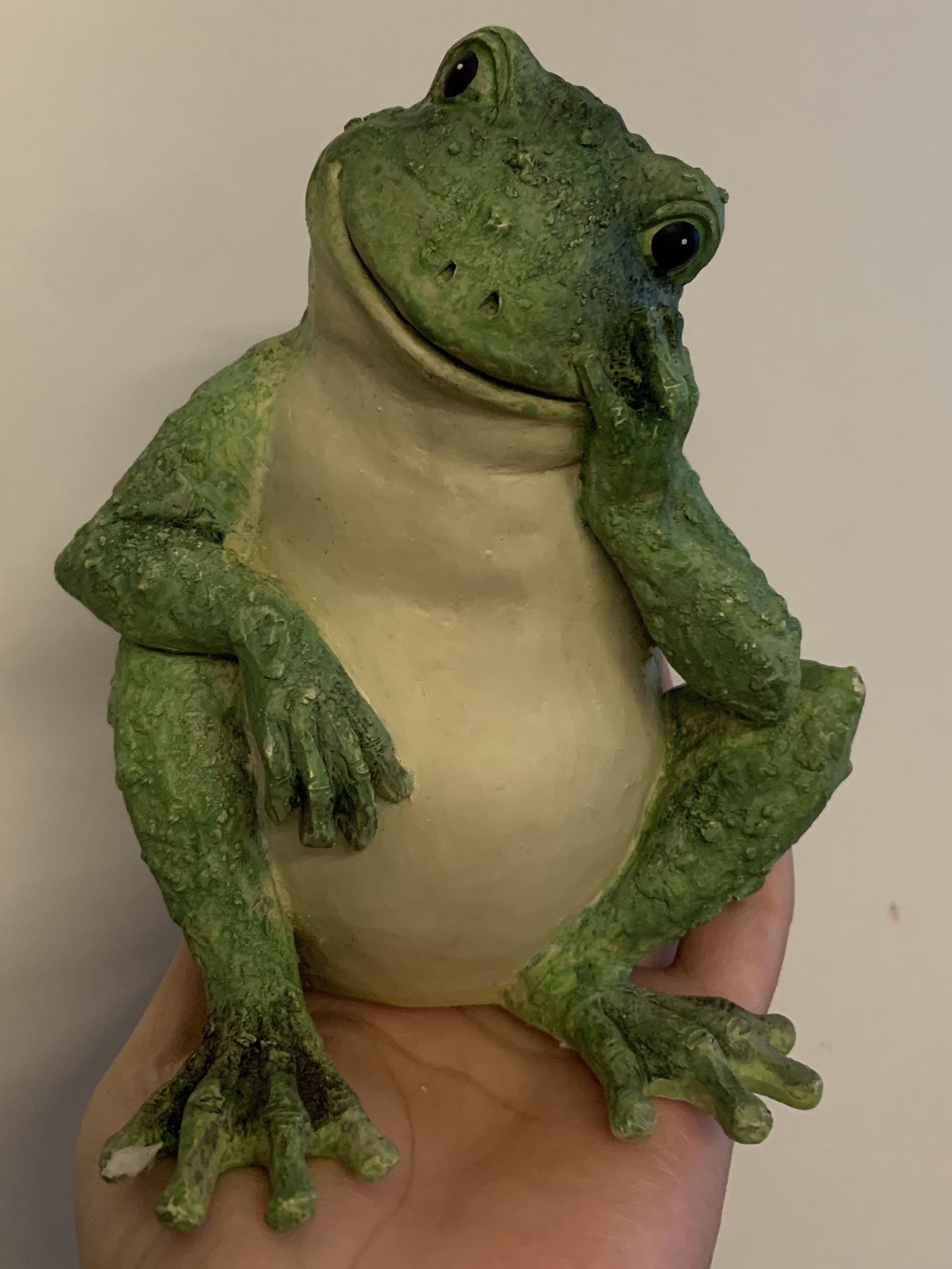 在想事情的青蛙