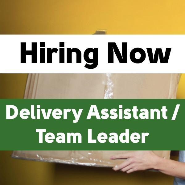 Delivery Assistant / Team Leader