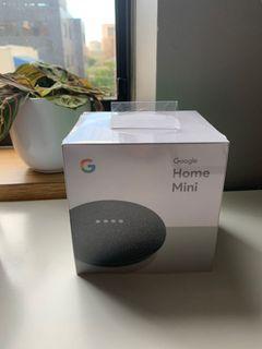 BNIP Google Home Mini