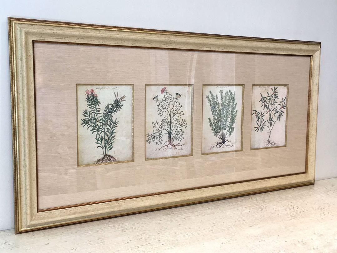 ⭐️ONE Stunning LARGE Renwil Framed and matted 4 Botanical Images